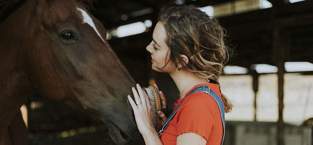 A lady in orange patting a horse's nose