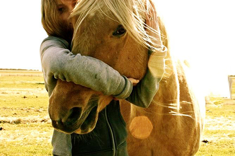 A lady hugging a horse