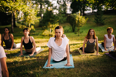 Ladies in a yoga class in a park