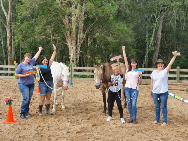 Women working together with horses for personal development